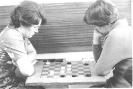 Шахматы, шашки