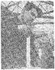 Токменин ТС65-7