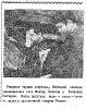 Пелевин Гончаров ц 11 ТС70-17