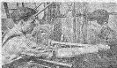Дернов Манонов ц5 ТС64-29