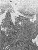 Ковалевский ц 7 ТС68-25