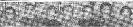 Кукарская ВА Емельянова АЯ Жлудова ВА Пинчук ЮД Васильева ЮД Дербышева КП Бутурина ВАц 8 ТС68-10...